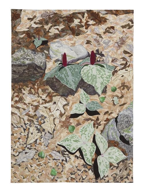 Appalachian Spring--Trillium 30x20 $1500