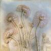 Inviting Love - Ranunculus-10x10