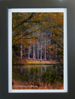 Autumn Portal by Lori Harrell