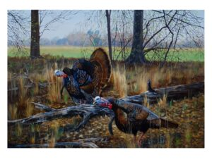 Gobblers on Edge by Bucky Bowles