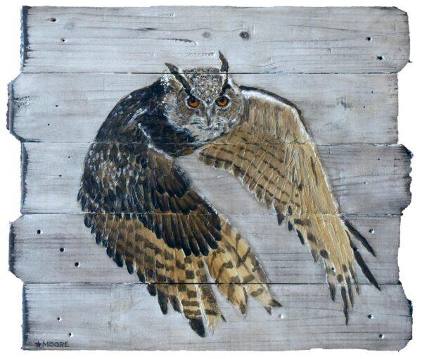 Keith Moore Eurasion Eagle-owl