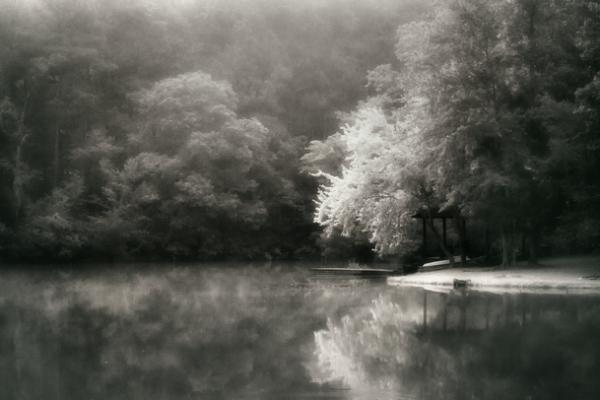 Lothlórien by Lori Harrell