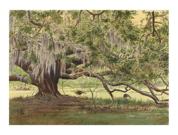 Low Country Gobblers by Bucky Bowles