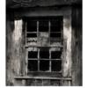 No cat in the window by Lori Harrell