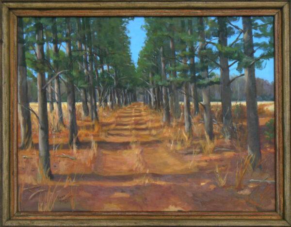 Plantation Road by Steven Stinchcomb