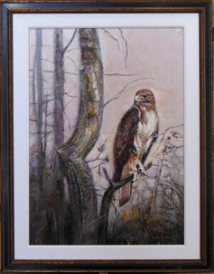 Red-Tailed Hawk by John Wilson