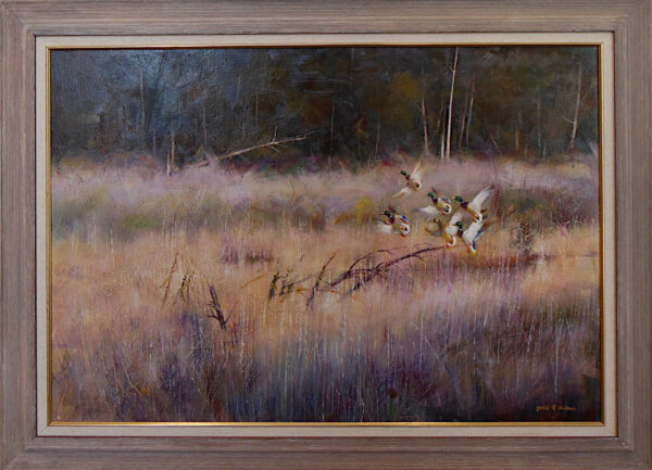 South Carolina Low Country by John Wilson