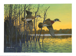 Sunrise Woodies by Bucky Bowles