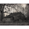 The House Sits Empty by Lori Harrell