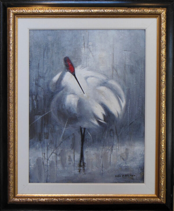 Whooping Crane by John Wilson